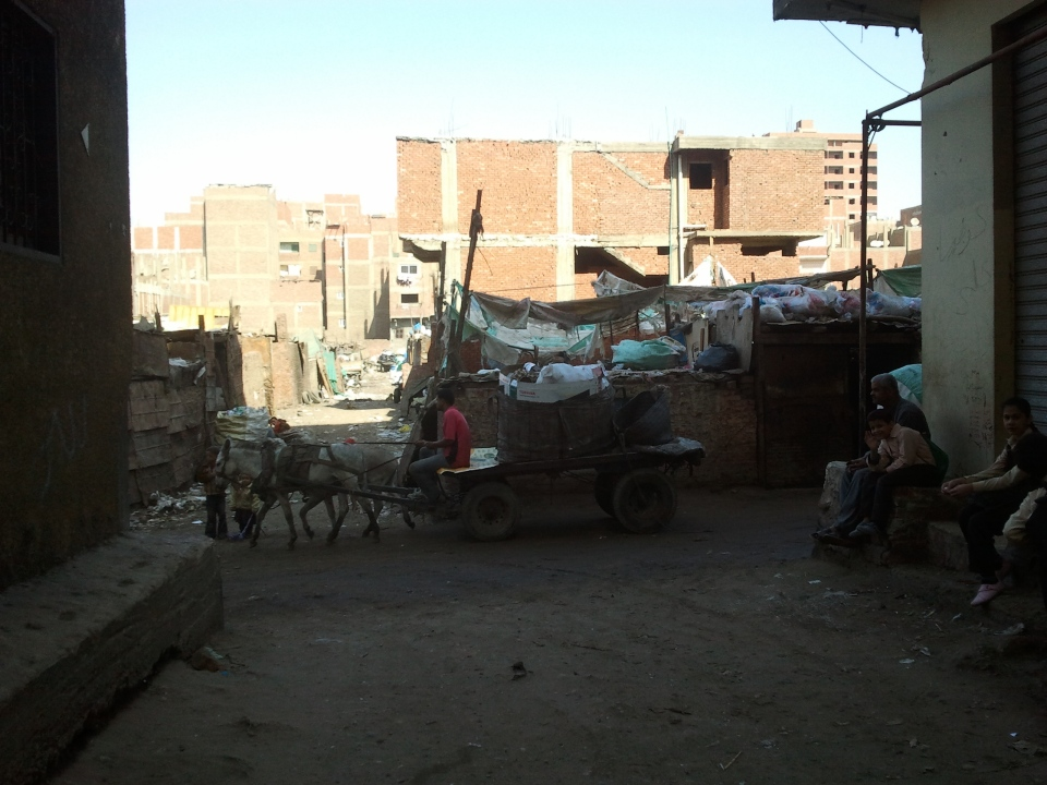 Donkeys carrying the rubbish