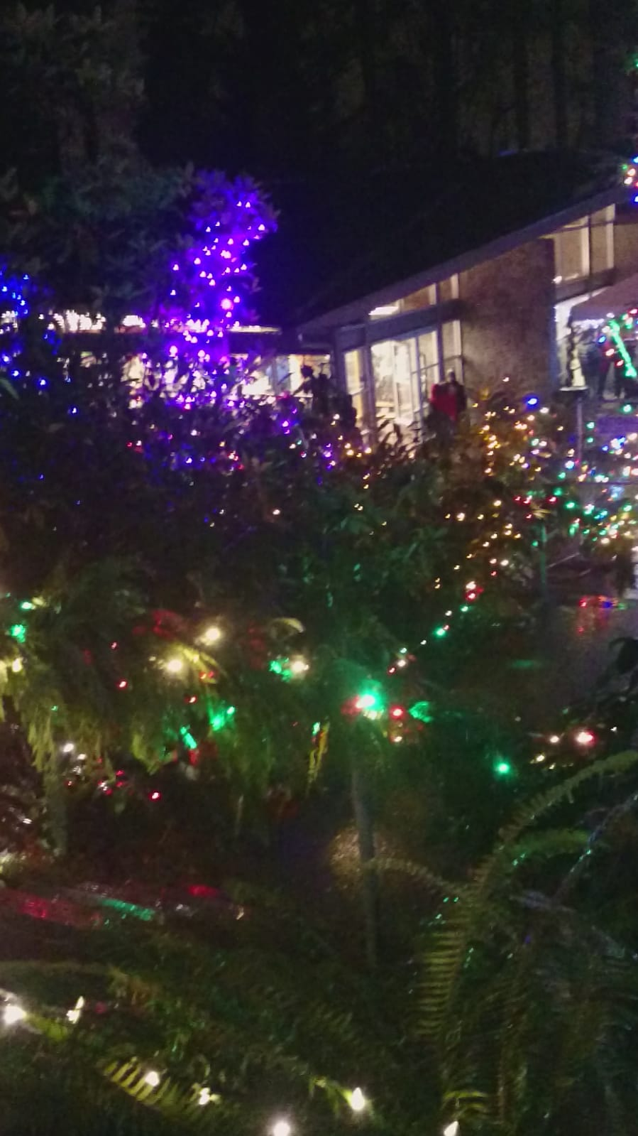 Christmas lights at the abbey.